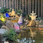 Pond designs & consultancy, pond installations, pond products, pond maintenance & services.